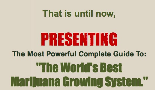 Ryan Riley presents the World Best Marijuana Growing System | EBOOK Direct Download