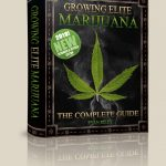 How To Grow Weed - ebook