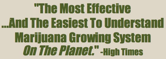 Easiest to understand marijuana growing system - HighTimes