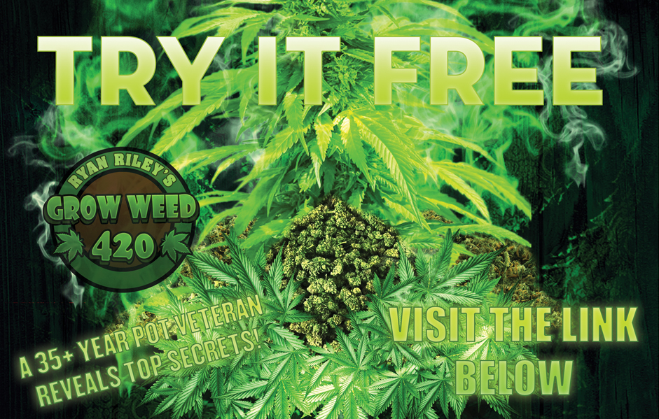 Free Weed + Free Growing Cannabis eBook