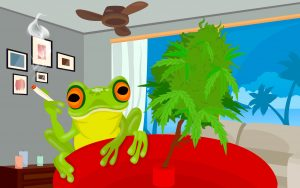 Marijuana Happy Frog - artist impression - download free marijuana wallpaper in hd