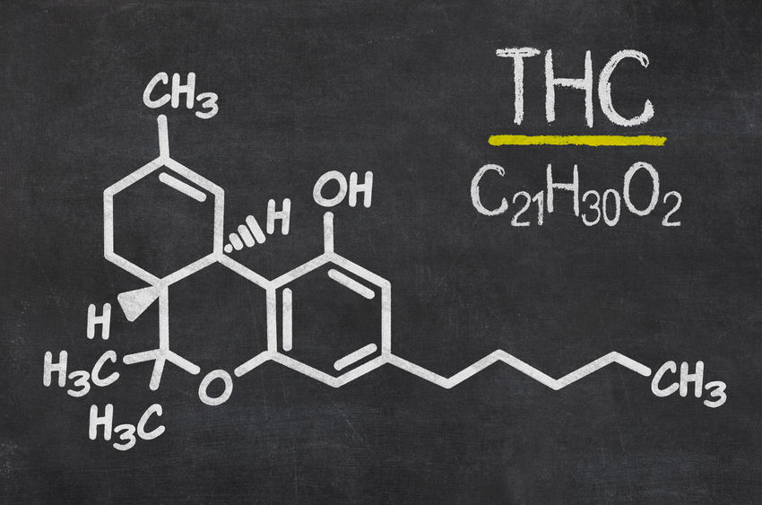 Psychoactive compound THC and its chemical formula in a doodle style infographics