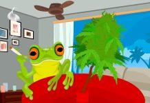 Bon Dia : Angrybud's Cannabis Branding