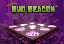BUD Beacon - The INDOOR Marijuana Grow Light System