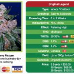 Blueberry Marijuana Seeds - Worldwide Delivery - Order online - CropKingSeeds.com
