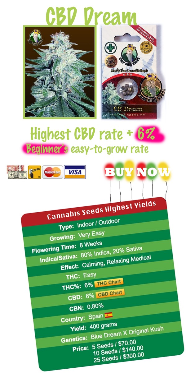 Worldwide delivery Marijuana Seeds - CBD Dream a low-CBD strain - order now