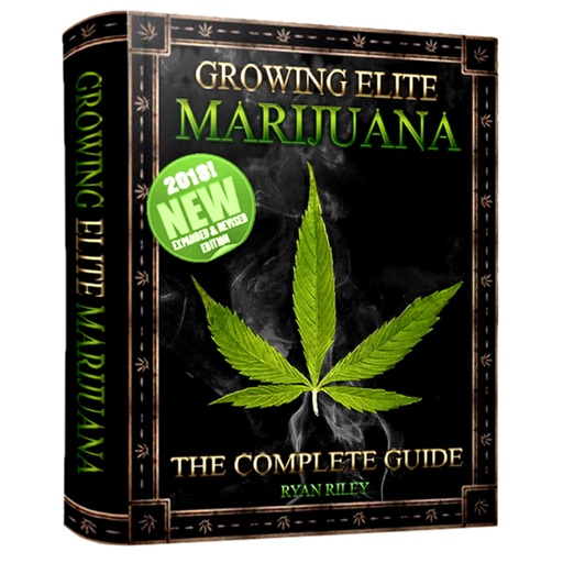 Marijuana Growing Bible ebook download, the ultimate guide and a stoner-friendly walkthrough, imagine now the 800 pages of marijuana cultivation experience!