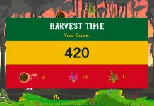 weed game for android - The Flying Croc Simulator - game dev design screenshot for android