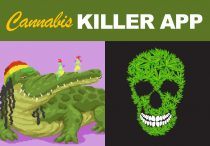Cannabis killer game for your website