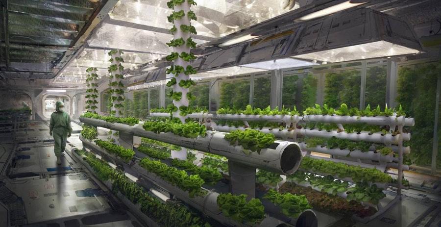 Futuristic hydroponic garden by eddie mendoza, deviantart